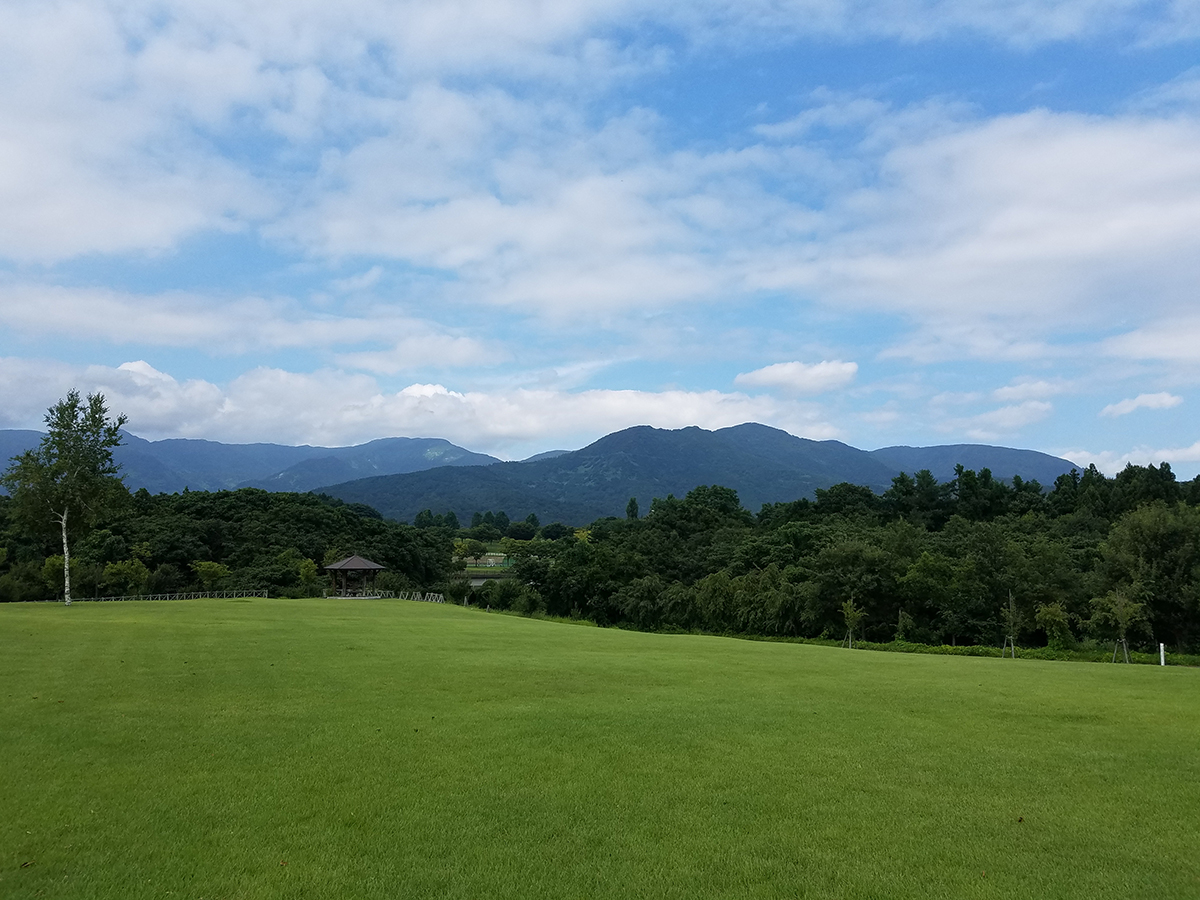 会場の松山水辺ふれあい公園には緑の芝生が広がっており、西側には新井総合公園のグラウンドが見えます。